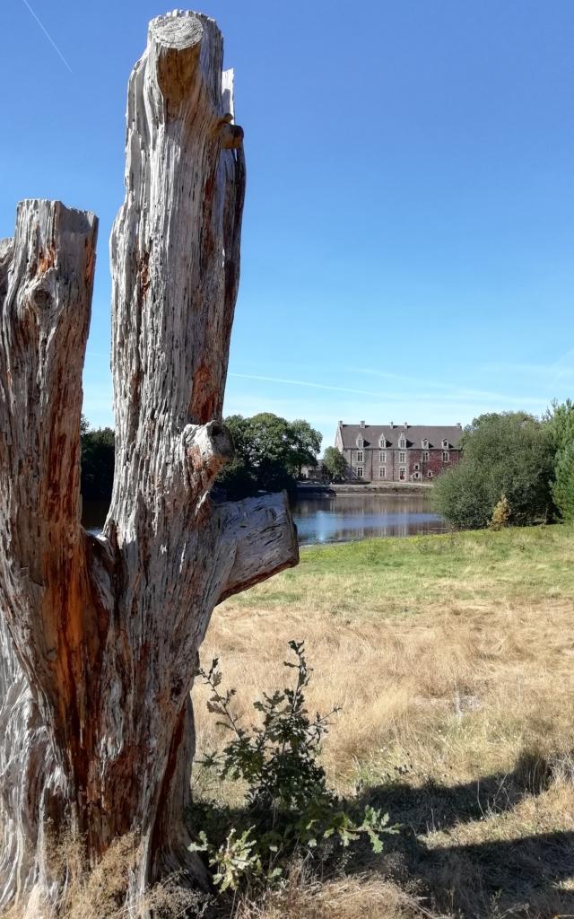 château, légendes arthuriennes, lac de Viviane, parc boisée, Concoret, brocéliande, Morbihan, Bretagne