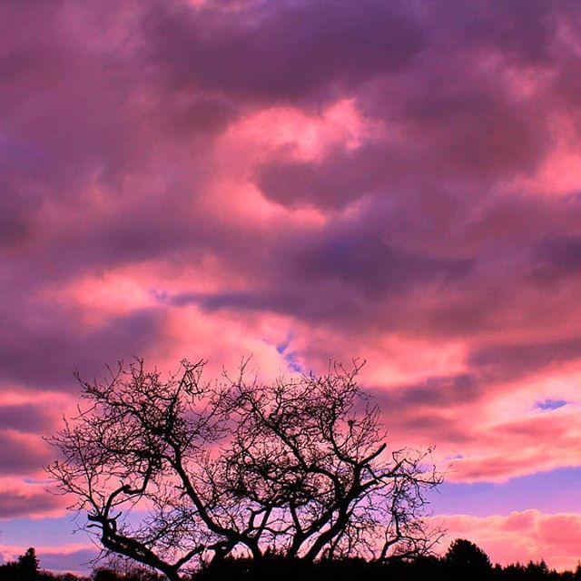 Ciel rose à Lizio