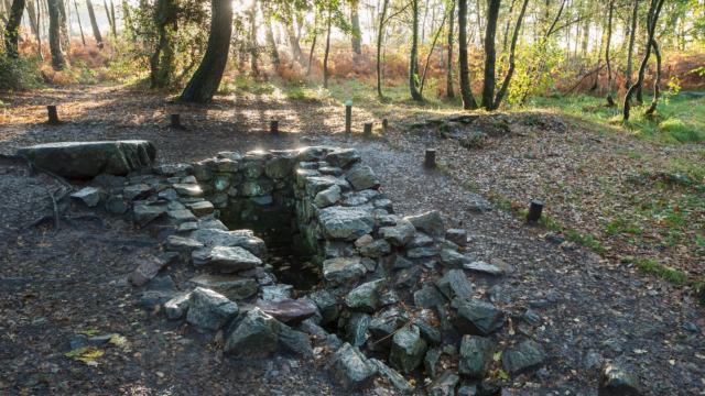 Paimpont, la fontaine de Barenton dans la foret de Broceliande.