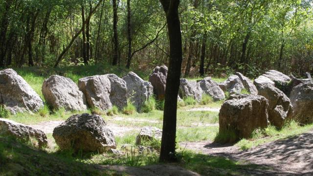 jardin aux moines site mégalithique en forêt de Brocéliande