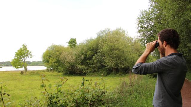 Réserve Ornithologique De Careil - homme regardant dans des jumelles