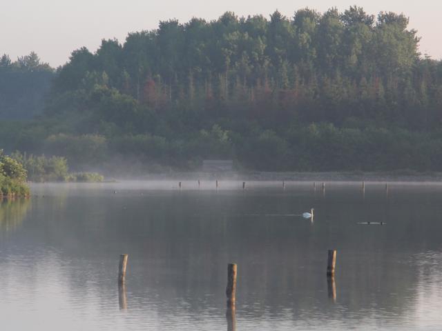 Réserve Ornithologique De Careil - vue générale sur le domaine
