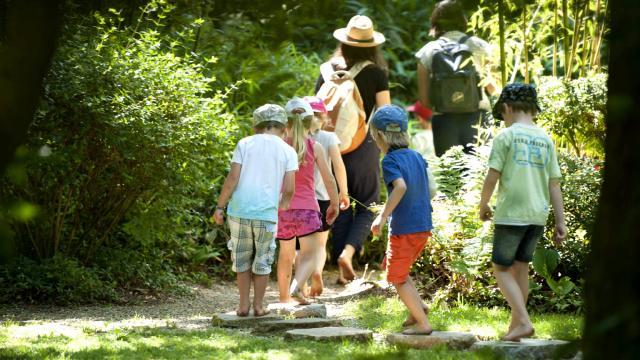 Jardin asiatique, Jardins de Broceliande, Breal-sous-Montfort.