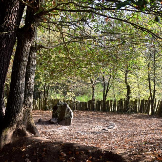 tombeau de Merlin, automne.
