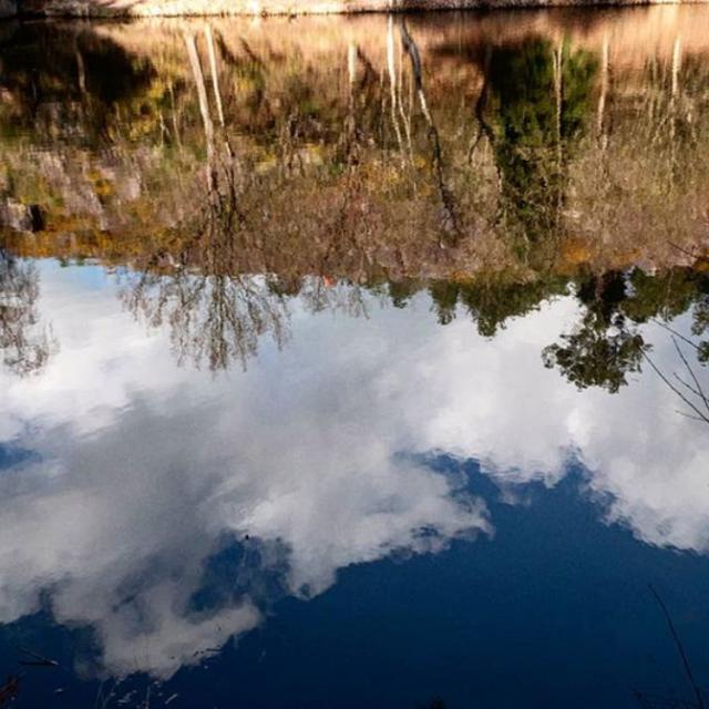 Vallon De La Chambre Au Loup - reflet dans l'eau