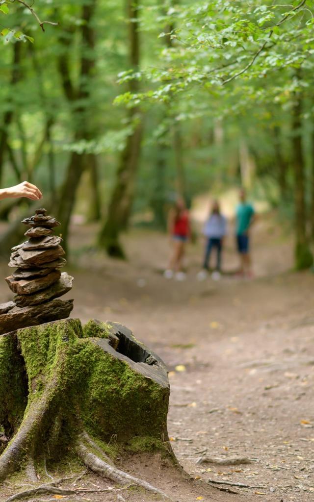 sculpture de pierre dans le val sans retour et randonnée en forêt de Brocéliande