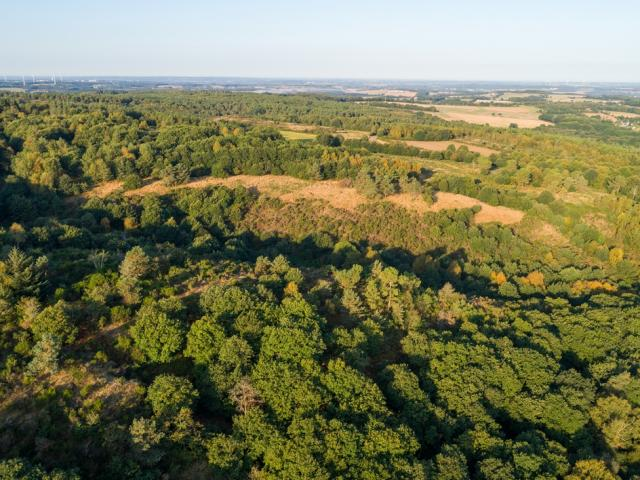 Brocéliande en drone