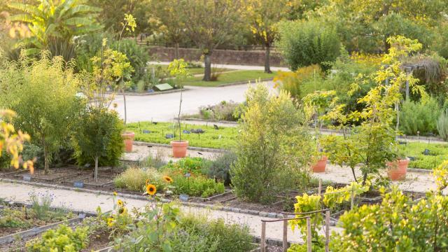 Jardin botanique Yves Rocher La Gacilly