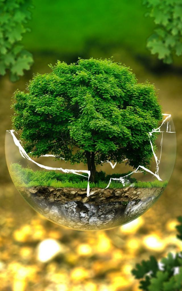 environmental-protection-326923-1920.jpg