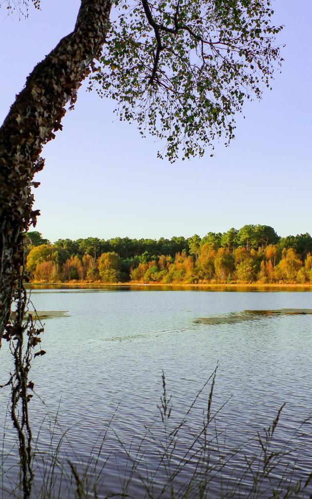 Lac De Trémelin Base De Loisirs (6)