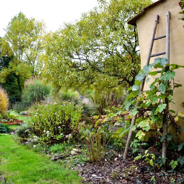 Ecrin Royal Jardins Broceliande