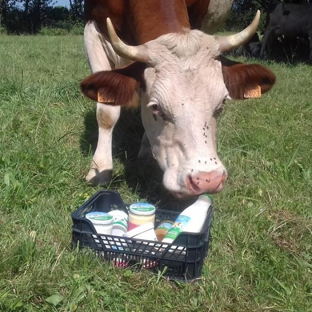 Visite de ferme - La Creme Rit - Guilliers